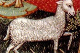 Trimalchione legge le stelle: sotto il Capricorno nascono i cornuti?