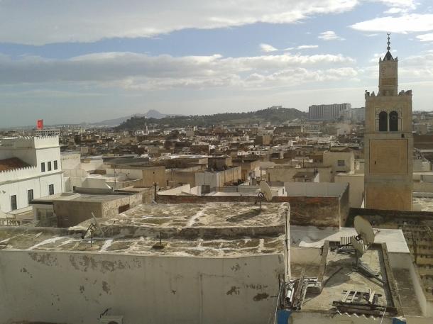 Tunisia: quando una rondine non fa primavera